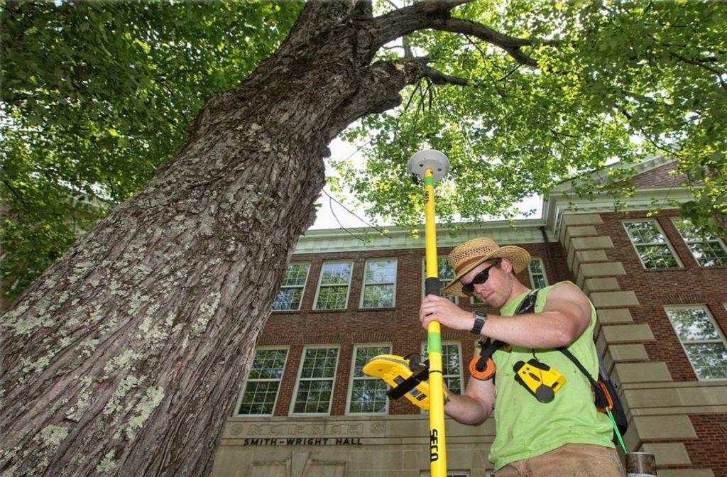 Arborist Consultations-Lake Alfred FL Tree Trimming and Stump Grinding Services-We Offer Tree Trimming Services, Tree Removal, Tree Pruning, Tree Cutting, Residential and Commercial Tree Trimming Services, Storm Damage, Emergency Tree Removal, Land Clearing, Tree Companies, Tree Care Service, Stump Grinding, and we're the Best Tree Trimming Company Near You Guaranteed!