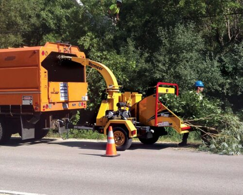 Commercial Tree Services-Lake Alfred FL Tree Trimming and Stump Grinding Services-We Offer Tree Trimming Services, Tree Removal, Tree Pruning, Tree Cutting, Residential and Commercial Tree Trimming Services, Storm Damage, Emergency Tree Removal, Land Clearing, Tree Companies, Tree Care Service, Stump Grinding, and we're the Best Tree Trimming Company Near You Guaranteed!