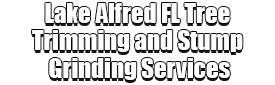 Lake Alfred FL Tree Trimming and Stump Grinding Services Logo-We Offer Tree Trimming Services, Tree Removal, Tree Pruning, Tree Cutting, Residential and Commercial Tree Trimming Services, Storm Damage, Emergency Tree Removal, Land Clearing, Tree Companies, Tree Care Service, Stump Grinding, and we're the Best Tree Trimming Company Near You Guaranteed!