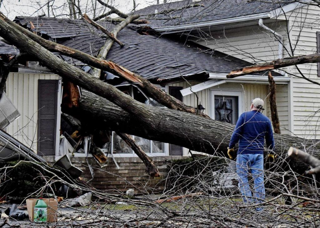 Storm Damage-Lake Alfred FL Tree Trimming and Stump Grinding Services-We Offer Tree Trimming Services, Tree Removal, Tree Pruning, Tree Cutting, Residential and Commercial Tree Trimming Services, Storm Damage, Emergency Tree Removal, Land Clearing, Tree Companies, Tree Care Service, Stump Grinding, and we're the Best Tree Trimming Company Near You Guaranteed!